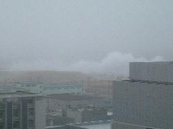 台風の中、神戸医療産業都市へ