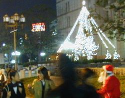 クリスマス気分の淀屋橋周辺