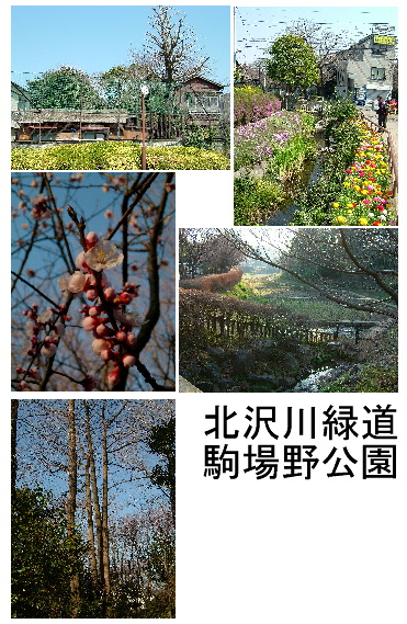 北沢川緑道、駒場野公園